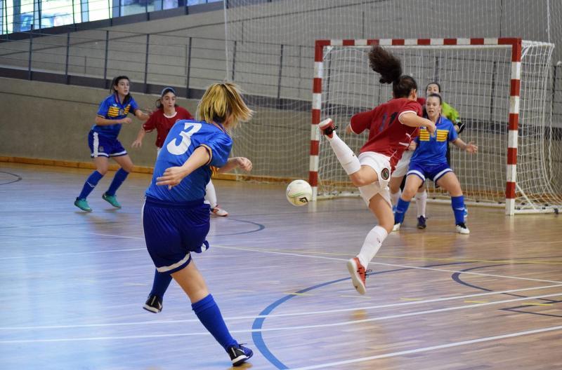 Federaci n aragonesa de f tbol for Federacion de futbol sala